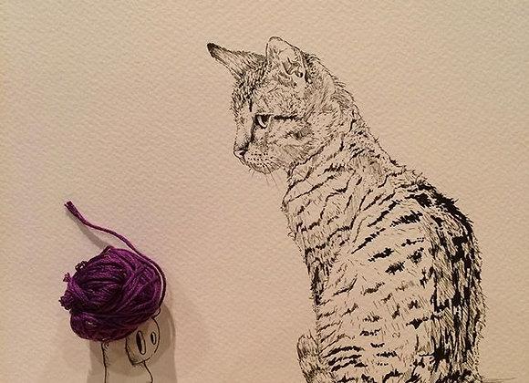 cat likes string