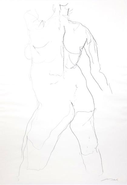27 - 2017 - Graphit auf Papier - 41,5 x 59 cm