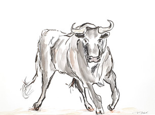 10 - 2019 - Stier - Mischtechnik auf Papier - 29,7 x 42cm