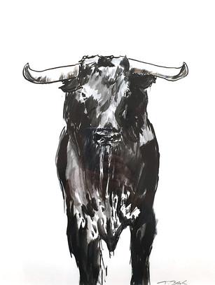 11 - 2019 - Stier - Mischtechnik auf Papier - 29,7 x 42cm