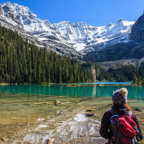 Customized Lake O'Hara Camping Trip