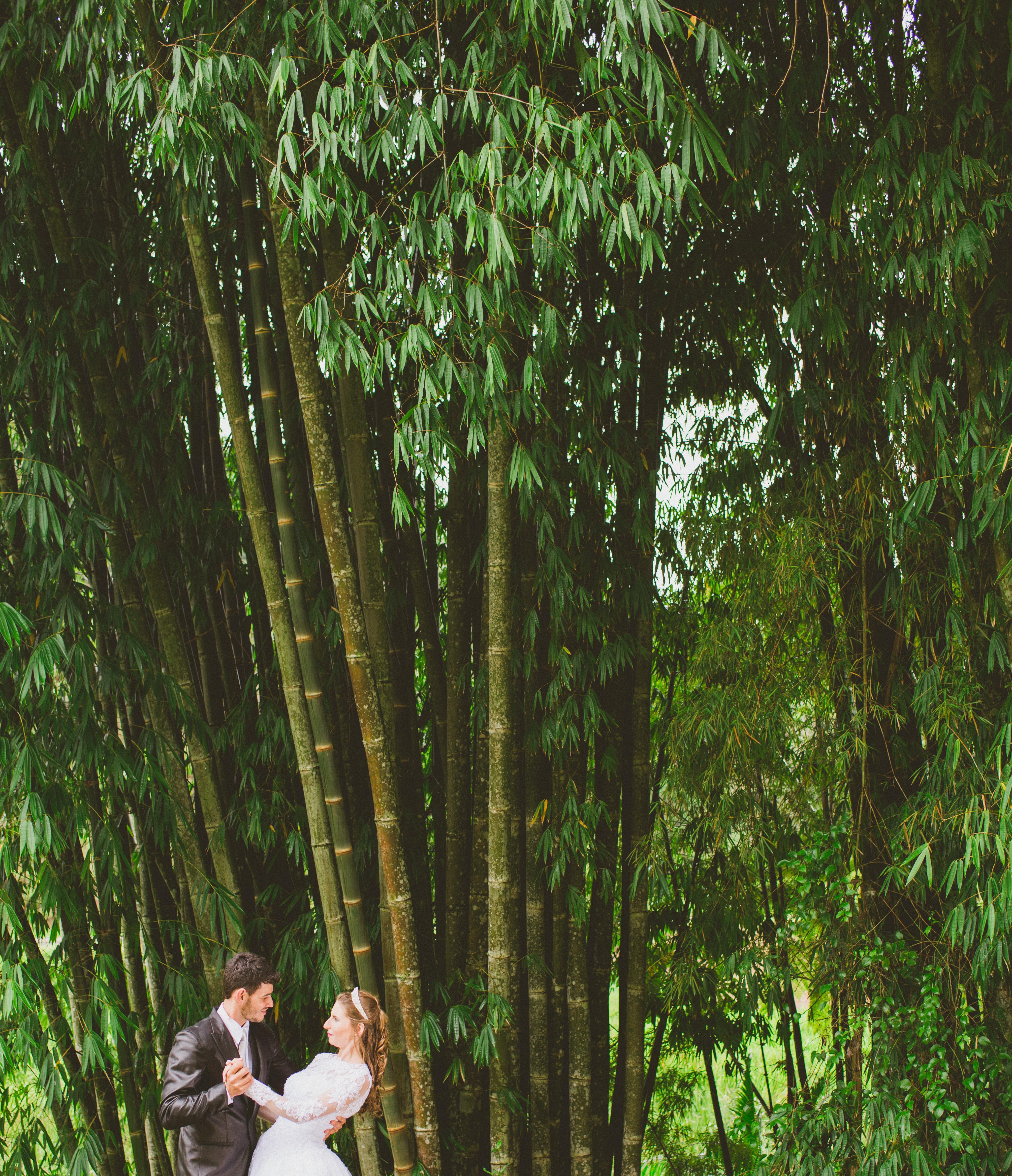 Find a Click fotografia de casamento cariacica es-403