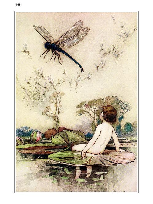 Card 168