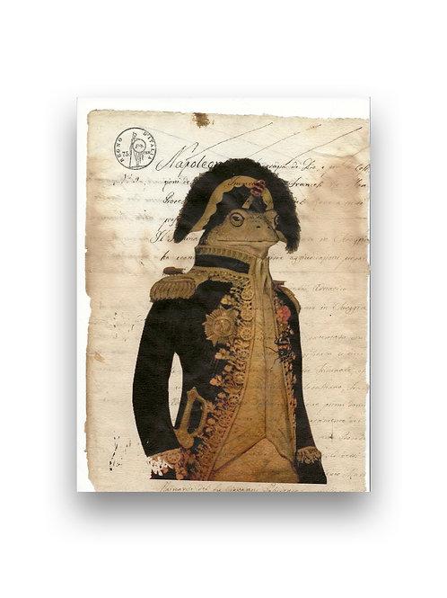 Frog manuscript