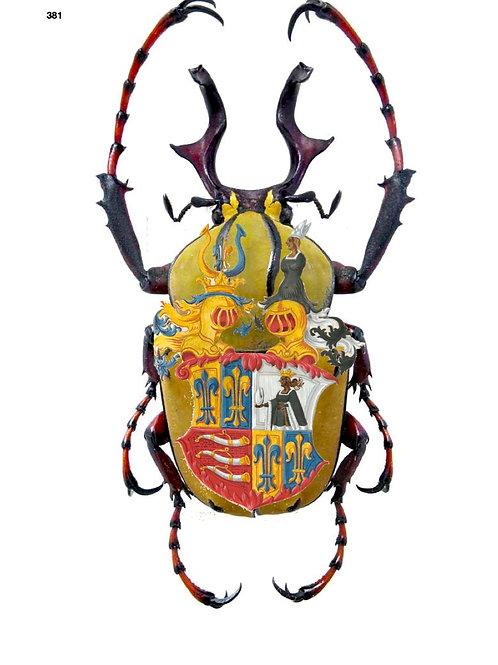 Araldica Insect