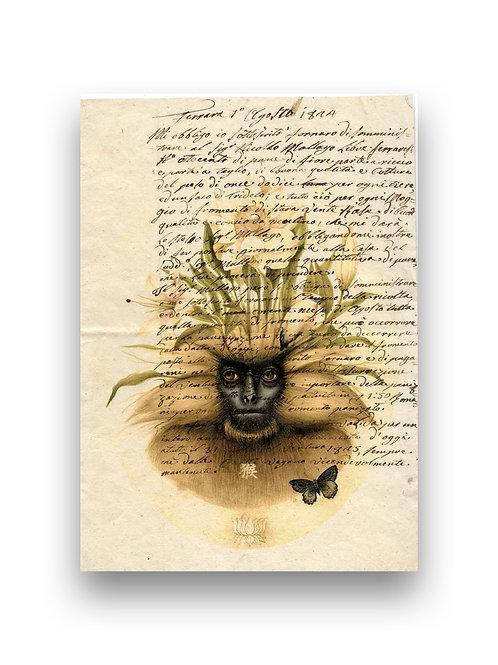 Lullaby Monkey manuscript