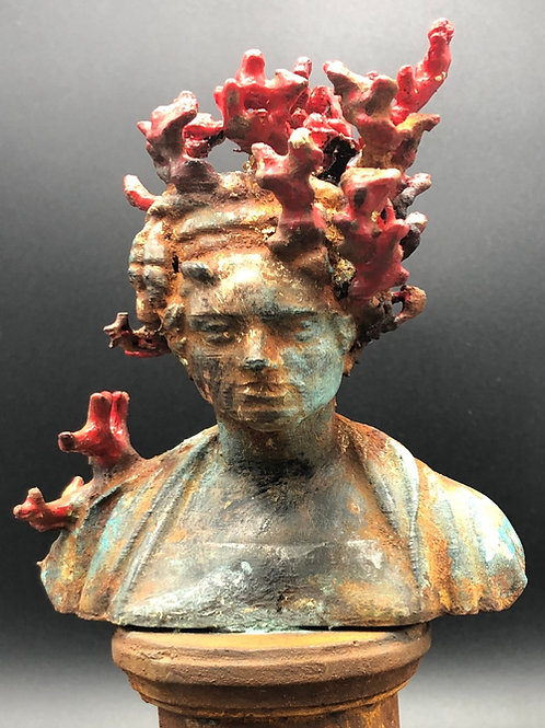 Corals Lady Bust