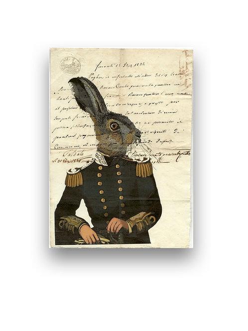 Lord Rabbit manuscript