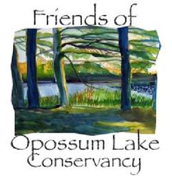 Friends of Opossum Lake Conservancy