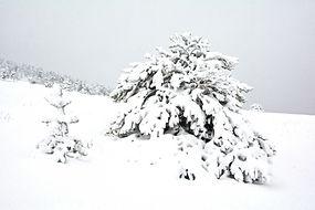A la mi mai, retour de l'hiver sur le plateau d'Aussois en Haute Maurienne.