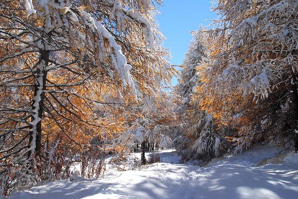 Fin octobre, l'hiver s'invite déjà dans la vallée du Ribon en Haute Maurienne.