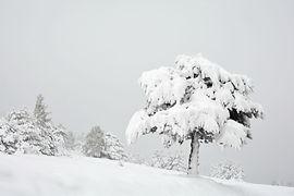 Retour de l'hiver à la mi mai sur le plateau d'Aussois en Haute Maurienne.