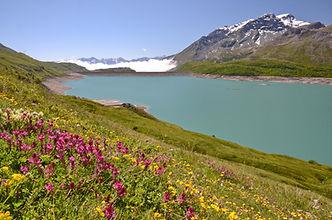 Printemps sur les hauteurs du lac du Mont Cenis face au Mont Giusalet, 3312 m.