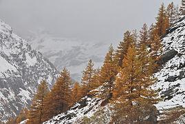 Fin octobre dans la vallée d'Avérole en Haute Maurienne.