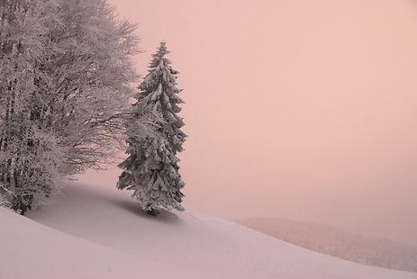 Plateau de Retord, le soleil couchant illumine le brouillard.