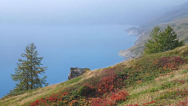 Brouillard d'automne au Mont Cenis en haute Maurienne.