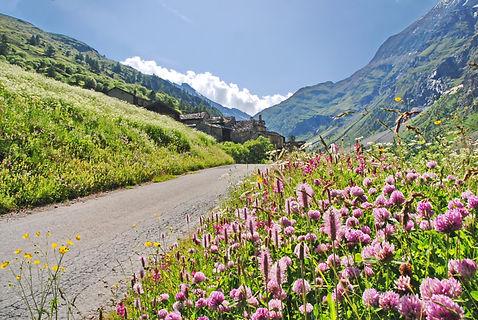 En arrivant à Vincendières sur la route d'Avérole en Haute Maurienne.