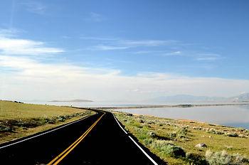 Antelope Island sur le Grand Lac Salé en Utah.
