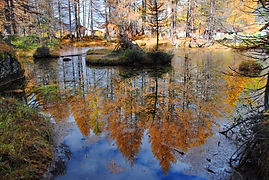 Reflets d'automne au Monal en Haute Tarentaise.
