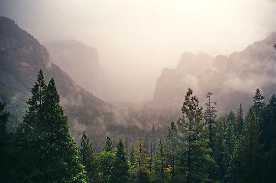 Brouillard sur la grande vallée de Yosemite.