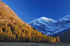Couleurs d'automne en Haute Maurienne et dans le fond, la pointe de Charbonnel 3752 m.