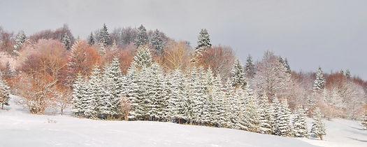 Soir d'hiver sur le plateau de Retord dans l'Ain.