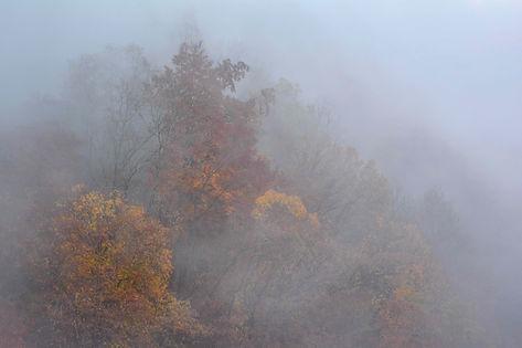 Depuis le Pont de l'Abime au pied des Bauges, regard sur l'automne.