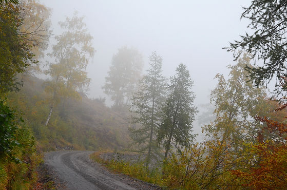 Route en automne dans le Parc Orsiera-Rocciavrè, Piemont Italie.