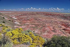 """En Arizona, le """"Painted Desert"""", pas besoin de traduire !"""