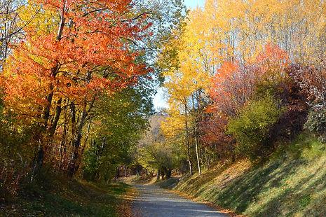 Route de Maurienne en octobre.