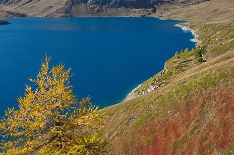 Couleurs d'automne au Mont Cenis en Haute Maurienne.