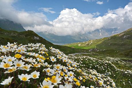Printemps au Mont Cenis en Haute Maurienne.