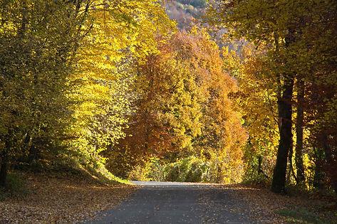 Route d'automne en Savoie.