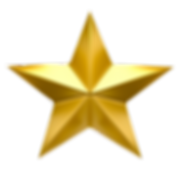 TB Gold Star.png