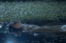 pond-darker_basic saturated_00000.jpg