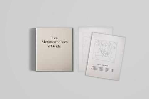 Limited Edition Ovidio