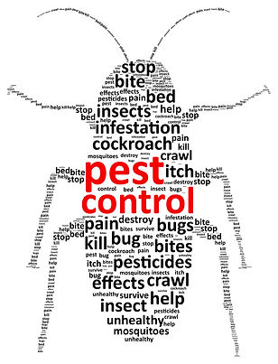 pest control, roaches, water bugs, spiders, cheap pest control, summerville, goose creek, moncks corner, charleson, north charleston, south carolina, ladson