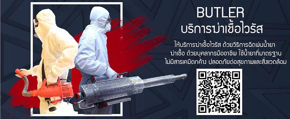 Virus disinfectant