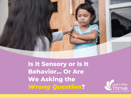 Is It Sensory or Is It Behavior…Or Are We Asking the Wrong Question?