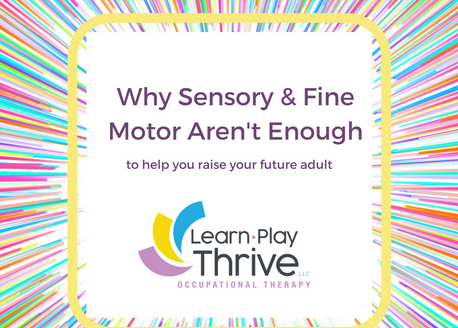 Why Sensory and Fine Motor Aren't Enough