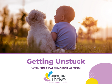 Getting Unstuck with Self-Calming for Autism