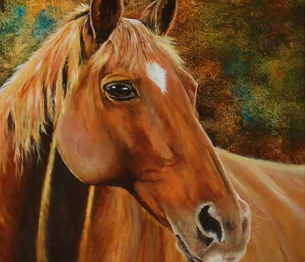 Shangraw horse.JPG