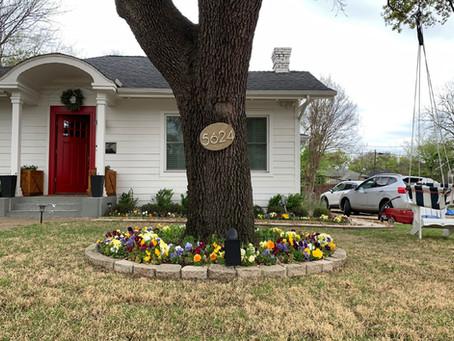April 2021 - 5624 Goodwin Avenue