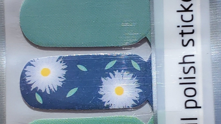Sage and daisies