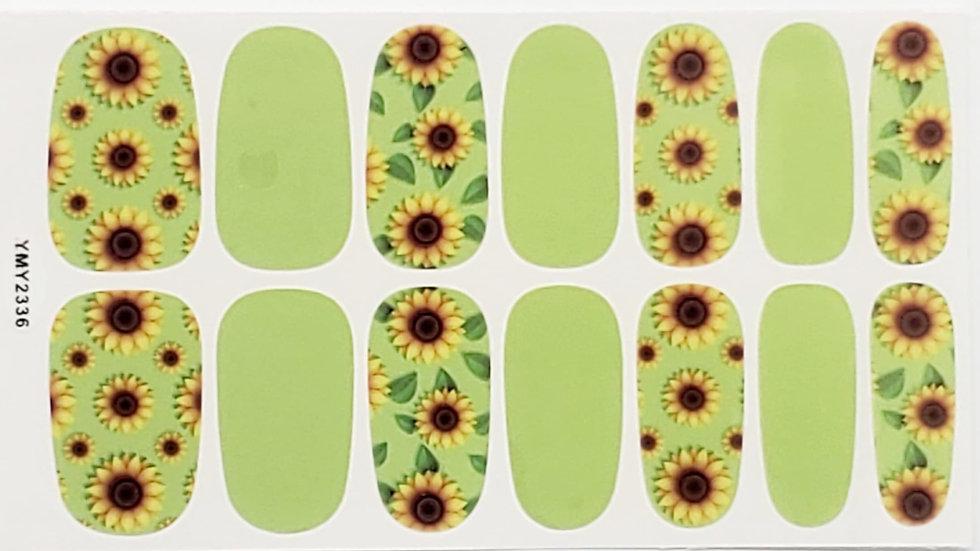 Kim Sunflowers