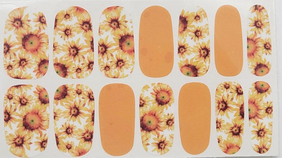 Kathy Sunflowers