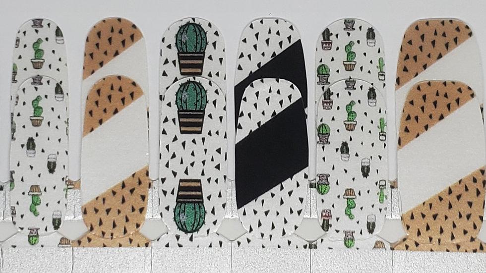 Cactus Modern
