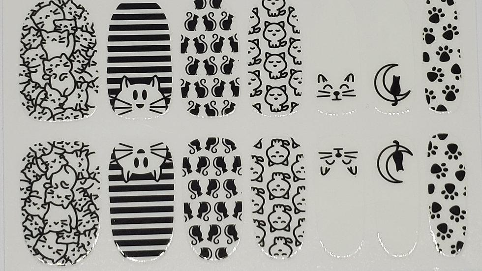 WB kitties