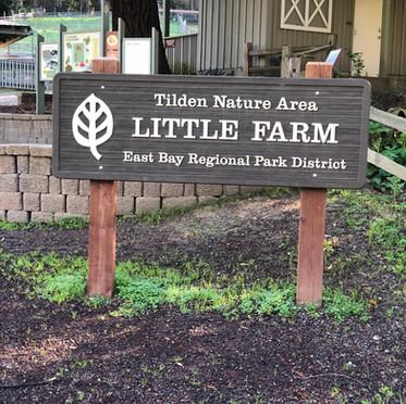 Field Trip to Tilden Park