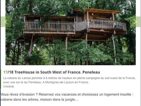 La cabane dans le TOP 18 des logements en pleine nature de Maison&Travaux